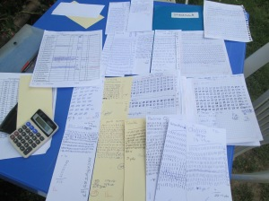 The Tally Sheets
