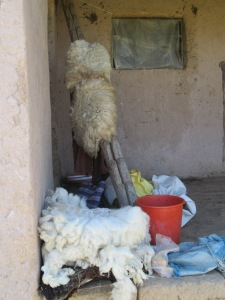 Fleece to be Spun Draped Over Loom