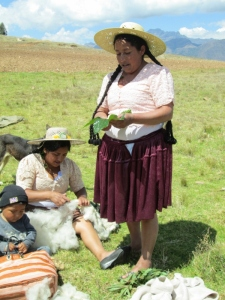 Doña Máxima and Daughter Vilma Applying Leaves for Pain Relief