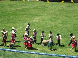 "Sheep and Dancers Making an Entrance for the ""Ovejeras"" Dance"