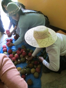The Huancarani Weavers Selecting Handspun Natural Dyed Yarn for Their Weavings