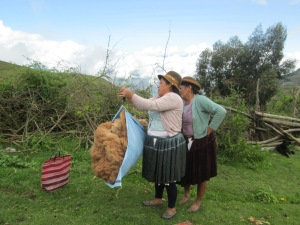 Weighing the 3 Kilos of Alpaca Fiber Purchased