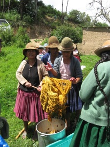 Dye Workshop in Huancarani, 2011