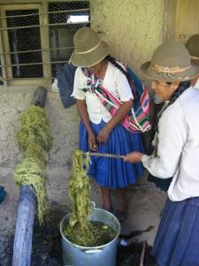 1st Suyku Dye Pot Results, Huancarani, 2008