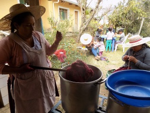 Doña Máxima Checking on Cochineal Dye Pot