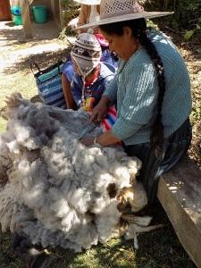 Doña Màxima Cutting Fleece